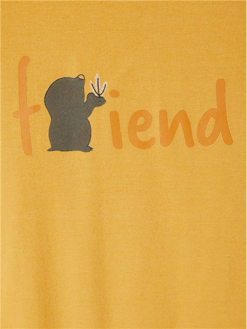 "T-SHIRT ""FRIEND"" NAME IT"